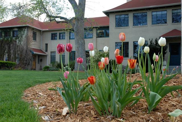 St. Anne's Episcopal School